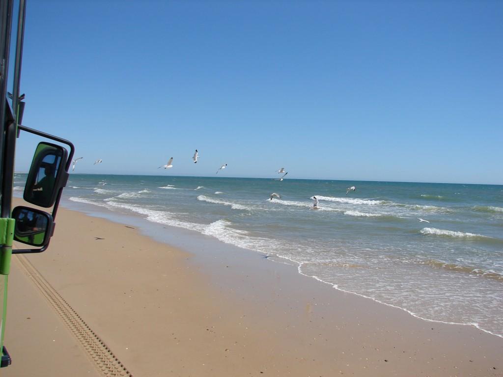 playas de arenas vírgenes