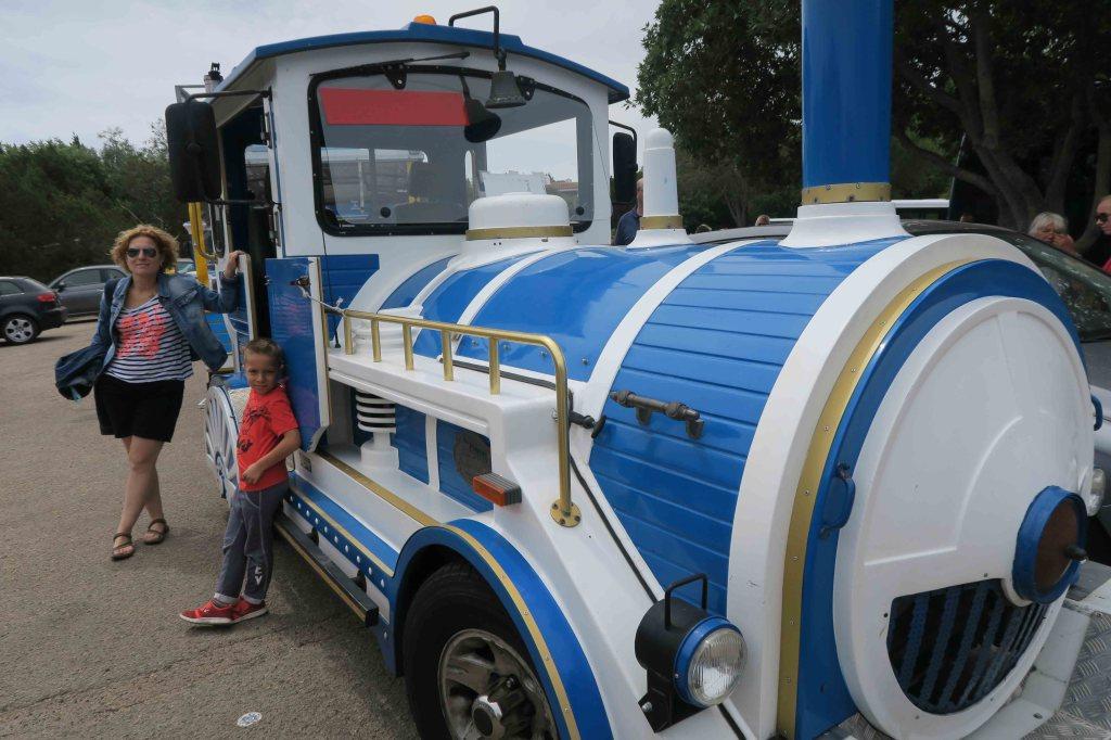 Tren turístico